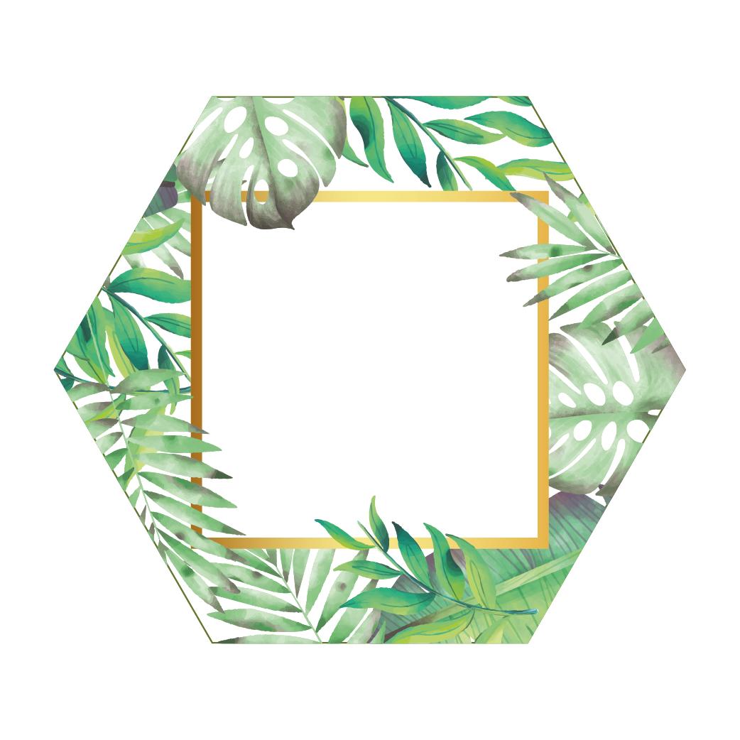 Hexagon Fullcolour Palm Fotolijst Wit