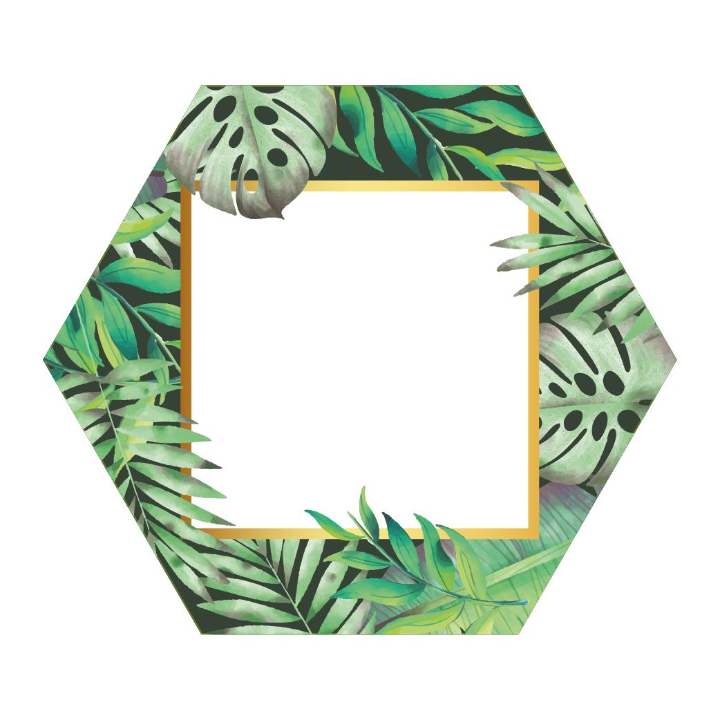 Hexagon Fullcolour Palm Fotolijst Zwart