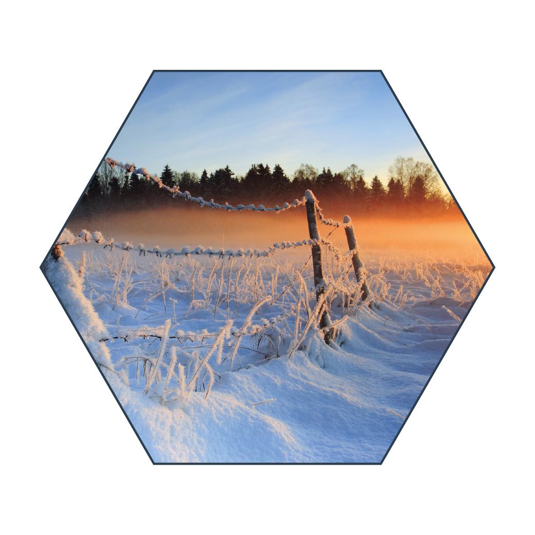 Hexagon Fullcolour Schemering