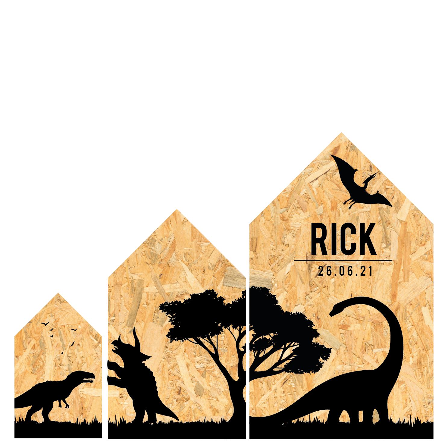Dino huisjes set met naam